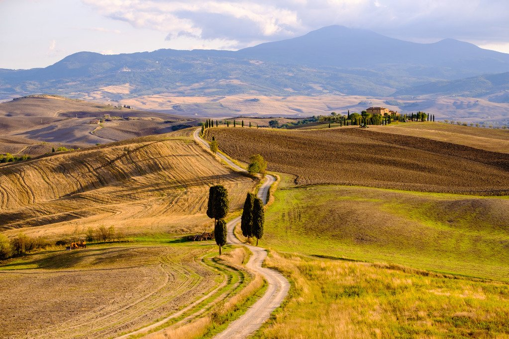 Country road with cypress trees in Tuscany