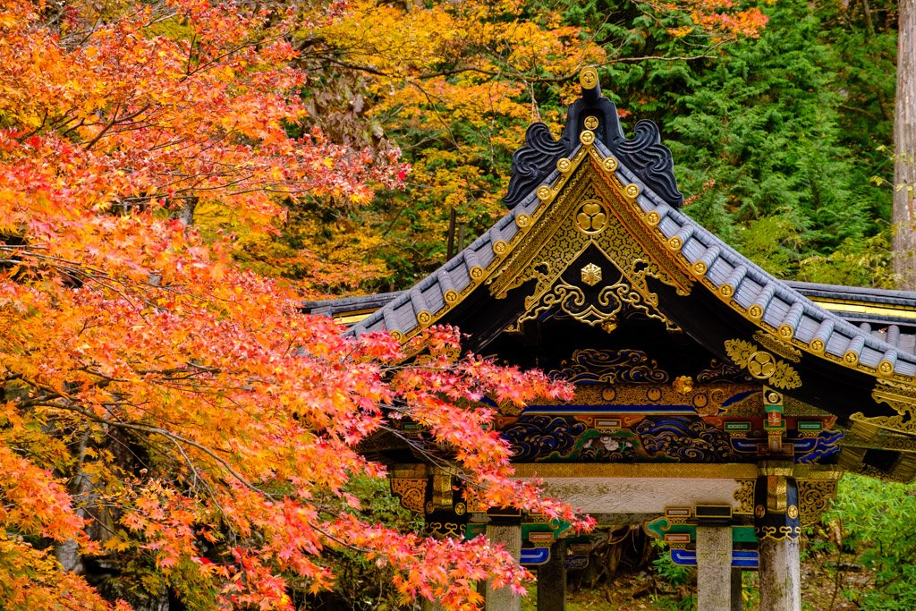 Temple and red leaves, Nikko